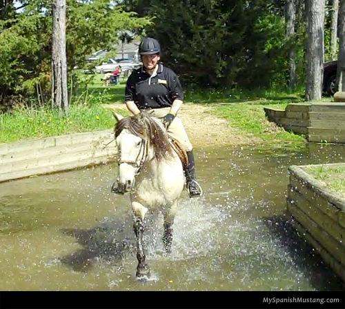 my-spanish-mustang-052414-water-obstacle
