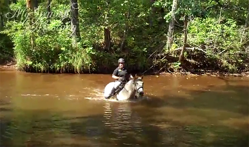 My Spanish Mustang crossing the river