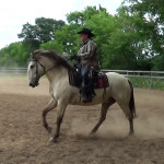 NAWD Basic 3 canter