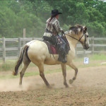NAWD Basic 3 canter1